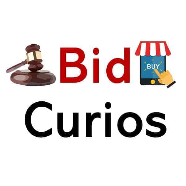 BidCurios
