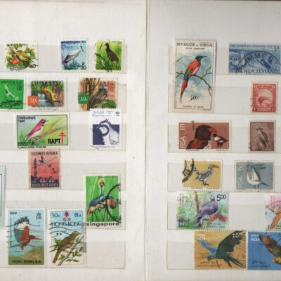 Stamp album with bird stamps, 100+ stamps, album included