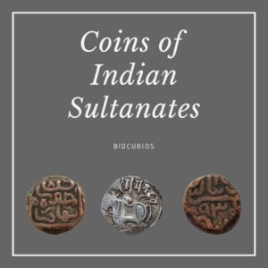 Indian Sultanates