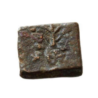 Ujjain, karshapana, Tree-type