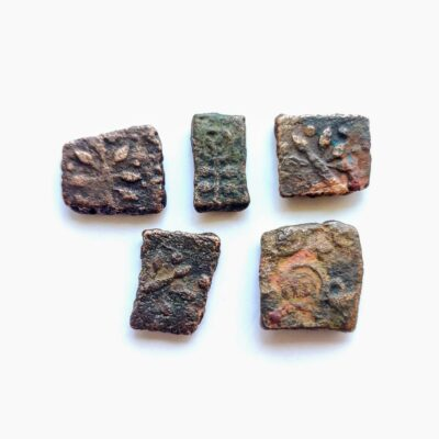 Ujjaini coins lot, 5 coins with animal motif, good grade coins