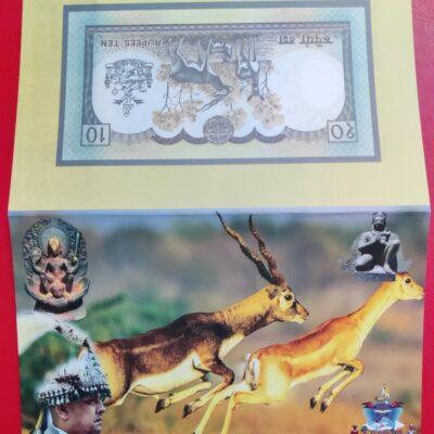 N9 Nepal 10 Rupee folder issue unc 2002